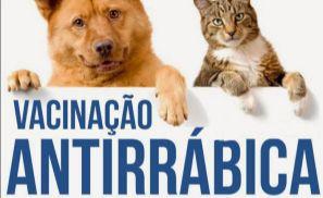 Começa no dia 17 a Campanha de Vacinação Antirrábica para cães e gatos (Crédito: Divulgação)