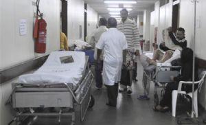 Vale do Ribeira tem 5 casos de febre amarela