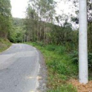 Cidadão denuncia colocação irregular de postes na estrada para Tapiraí
