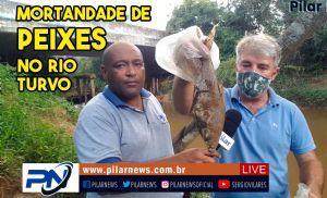 Milhares de peixes aparecem mortos no rio Turvo