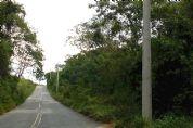 Cidadão denuncia suposta colocação irregular de postes na estrada para Tapiraí