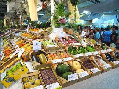 Começa hoje e vai até domingo a Feira Agropecuária de Pilar do Sul, a FEAPS 2019