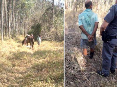 Ladrão é preso após furtar e abater bovino em sítio no bairro da Ilha