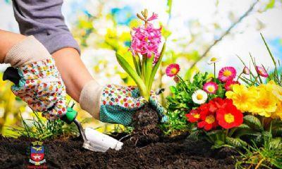 Senar e Sindicato Rural de Pilar do Sul promovem curso gratuito de Jardineiro