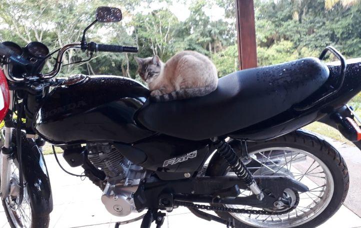 Motocicleta Honda CG 125 é furtada na Nova Pilar