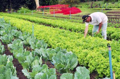 Inscrições abertas para o curso Senar de cultivo orgânico de hortaliças