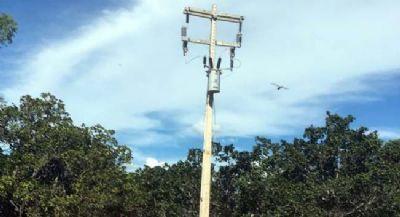 Ladrão derruba transformador para furtar cobre no bairro Pinhal